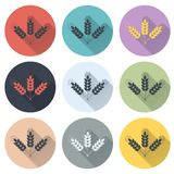 Set of grain web icons Stock Image