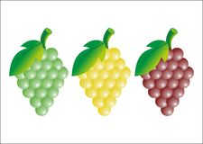 Set of grapes. Yellow, green and red grape in vector Stock Photo