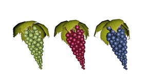 Set of grapes - 3D render Stock Image