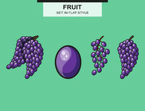 Set of grapes and grape bunches Royalty Free Stock Images
