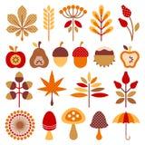 Set Graphic Autumn Icons Brown Orange Red vector illustration