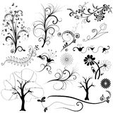 Set graphic floral element Royalty Free Stock Images