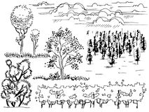 Set of graphic line Illustration , the entourage of trees on a white background. Beautiful set of graphic line Illustration , the entourage of trees on a white Royalty Free Stock Images