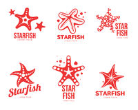 Set of graphic, silhouette starfish logo templates. Vector illustration isolated on white background. Stylized graphic starfish logotype, logo design, summer Royalty Free Stock Photography