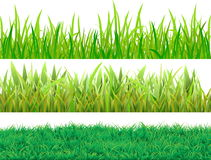 Set grass Stock Image
