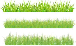 Free Set Grass Royalty Free Stock Images - 13992379