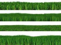 Set grass Stock Image