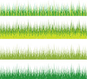 Set of grass Royalty Free Stock Image
