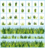 Set grass Royalty Free Stock Images