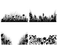 Set of grass backgrounds. Set of four vector grass silhouettes backgrounds Stock Photography