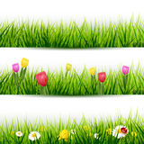 Set of grass borders Stock Images