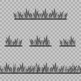 Set Grass Borders, Vector Illustration. Abstract field texture. Symbol of summer, plant,eco and natural, growth or fresh. Design f. Set Grass Borders, Vector Stock Photo