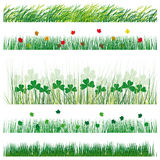 Set grass and leaves royalty free illustration