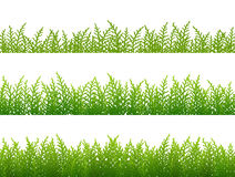 Set of grass seamless border Stock Images