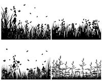 Set of grass silhouettes Stock Photos