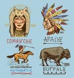 Set grawerujący rocznik, ręka, etykietki lub odznaki dla, rysująca, stara, hindusa lub rodowitego amerykanina bizon, cioski i nam Obraz Stock
