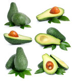Set of green avocado fruits with leaf Stock Photos