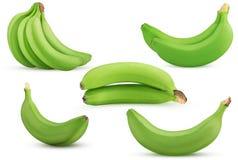 Set green bananas bunch, two, single royalty free stock photography