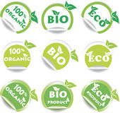 Set of green bio and eco stickers Royalty Free Stock Photos