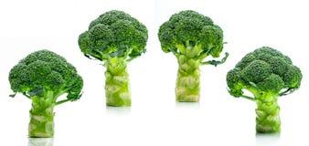 Set of green broccoli Brassica oleracea. Vegetables natural so. Urce of betacarotene, vitamin c, vitamin k, fiber food, folate. Fresh broccoli cabbage isolated Royalty Free Stock Images