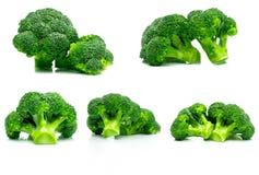 Set of green broccoli Brassica oleracea. Vegetables natural. Source of betacarotene, vitamin c, vitamin k, fiber food, folate. Fresh broccoli cabbage isolated Royalty Free Stock Image