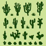 Set of green cacti Royalty Free Stock Photography