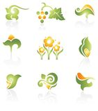 Set of green design elements Stock Photo