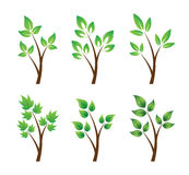 Set of green elements Royalty Free Stock Photo