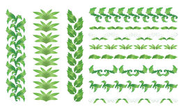 Set of  green floral borders - vector Royalty Free Stock Photo