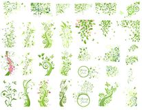 Set of green floral design elements Royalty Free Stock Photos