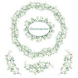 Set of green floral patterns, ornaments and vector wreaths of green leaves and vectors for decoration. Spring ornament concept royalty free stock images
