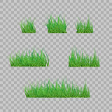 Set Green Grass Borders, Vector Illustration. Abstract field texture. Symbol of summer, plant, eco and natural, growth or fresh. D Royalty Free Stock Photography