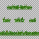 Set Green Grass Borders, Vector Illustration. Abstract field texture. Symbol of summer,plant, eco and natural, growth or fresh. De. Set Green Grass Borders Royalty Free Stock Photography