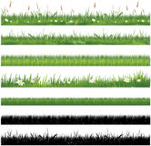 Set of green grass collection Royalty Free Stock Photography