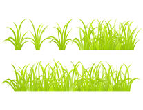 Set of green grass element Stock Photo