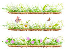 Set green grass on ground. Grass, flowers, clover and butterflies. On white vector illustration Stock Photography