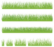 Set of green grass isolated on white background Royalty Free Stock Photos