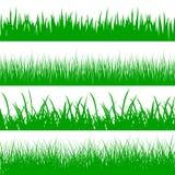 Set green grass on white background - vector. Set green grass on white background - stock vector Royalty Free Stock Photos