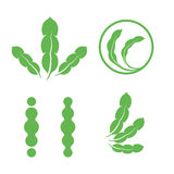 Set of green isolated leaves logos. Plant elements logotype collection. Natural products sign. Leaf symbol. Healing Royalty Free Stock Images