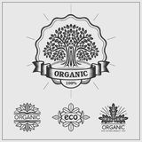 Set of green labels and badges for organic, eco and bio products on black background. Vector Stock Photos