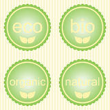 Set of green labels. Set of pastel green labels with leaves for organic, natural, eco or bio products vector illustration