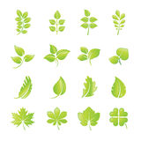 Set of green leaf icons Stock Images