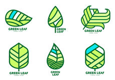 Set of green leaf logo templates, vector illustration. Isolated on white background. Collection of green leaf logotype template, environment protection, nature Stock Photos