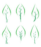 Set of green leafs Stock Images