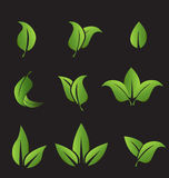 Set of green leafs icons elements Stock Photos