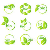 Set of green leaves bio symbol design elements Royalty Free Stock Photography