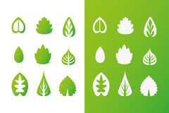 Set of green leaves design elements. This image is a ECO Organic illustration Stock Photo
