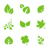 Set of Green Leaves Design Elements. Royalty Free Stock Image