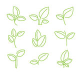 Set of green leaves design elements Stock Images