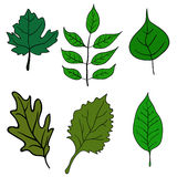 Set of green leaves design elements. Vector Stock Photography